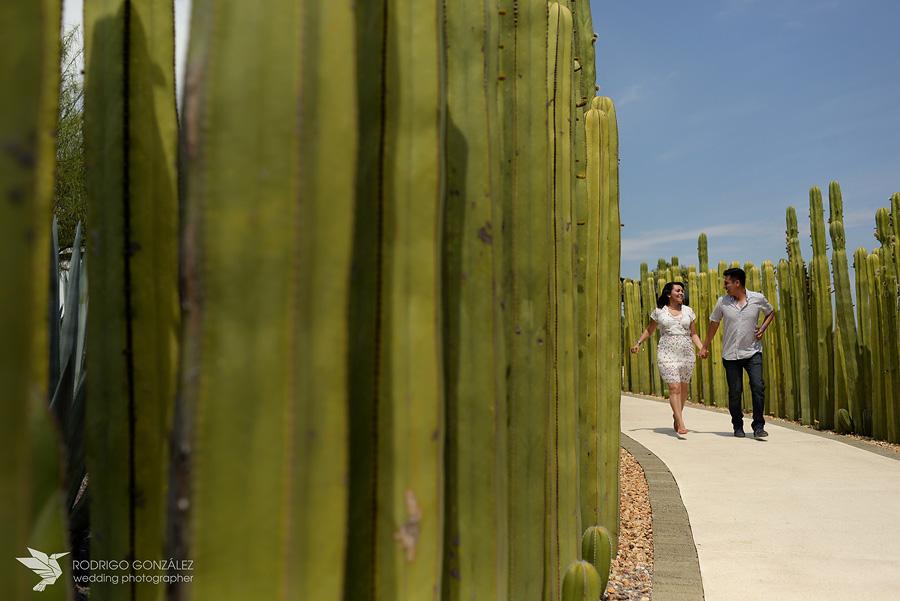 fotografo_jardines_de_Mexico_2669
