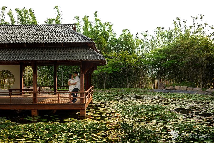 jardin_japones_3194